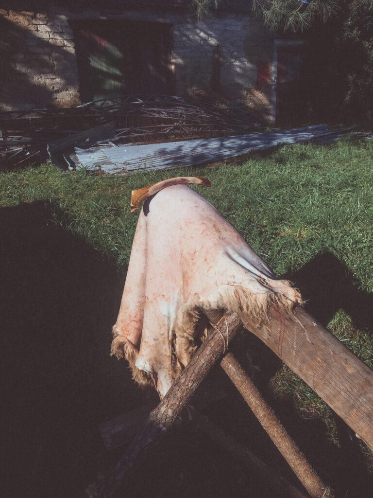 Sheepskin and antler scraper