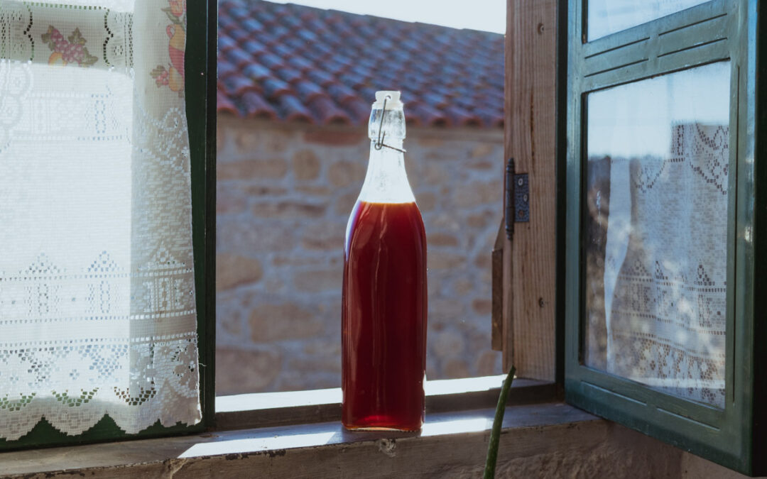 Rose Hip Syrup | Simple Recipe